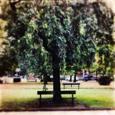 Haunting Autumn - 1 (12)