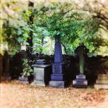 Haunting Autumn - 1 (2)